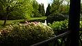 Schlosspark Lütetsburg - 20140503140217.jpg