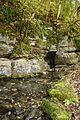 Schmiech Karstquelle Schwaebische-Alb.jpg