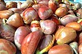 Seeds of Jackfruit 001 2.jpg