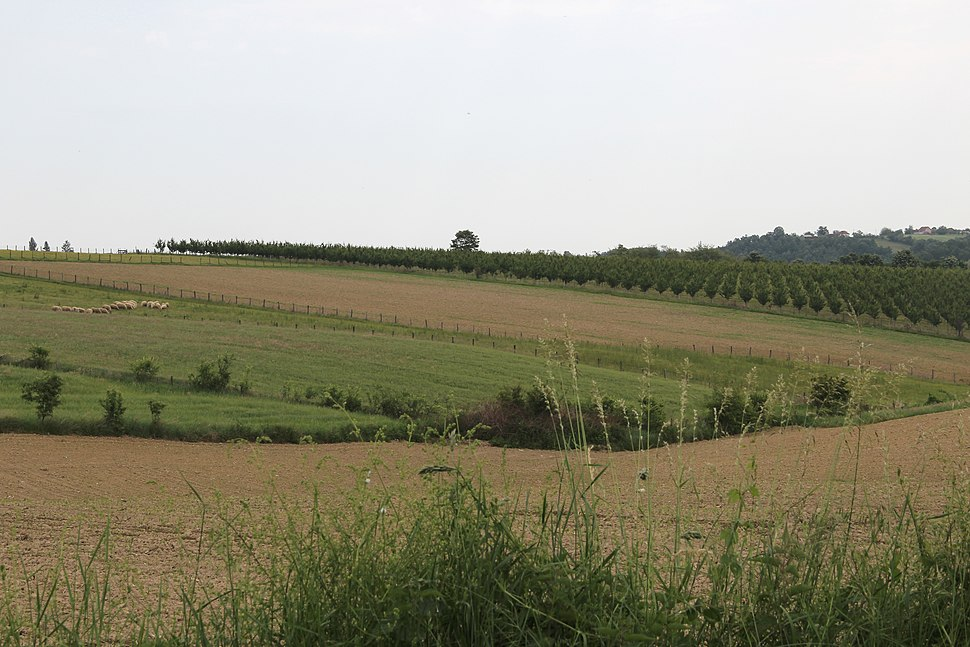 Selo Kotešica - opština Valjevo - zapadna Srbija - Panorama 13