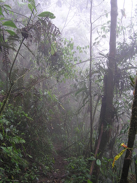 precipitacion geografica yahoo dating
