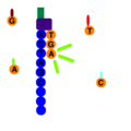 Sequence By Synthesis.png