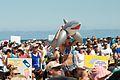 Shark Inflatable.jpg