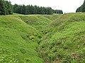 Sheil Cleuch, White Hill - geograph.org.uk - 467112.jpg