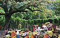 Shilin Residence Park 士林官邸公園 - panoramio (3).jpg