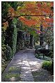 Shogakuji Temple - panoramio.jpg