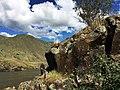 Snake River AD3 NRHP76001868 Asotin County, WA.jpg