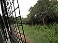 Snap from Bannerghatta National Park Bangalore 8530.JPG