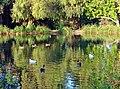 Social Gathering, Ford Park, Redlands, CA 8-12 (17059680290).jpg