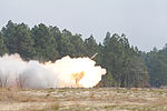 Soldiers, Marines work together in joint exercise DVIDS891818.jpg