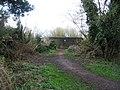 Spring Hide - geograph.org.uk - 756633.jpg