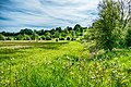 Spring Meadow (34661137891).jpg