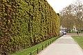 Spring in London (7113781435).jpg