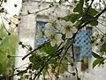 Spring on Podol, Kiev. Frunze Str. 2009-04 - panoramio.jpg