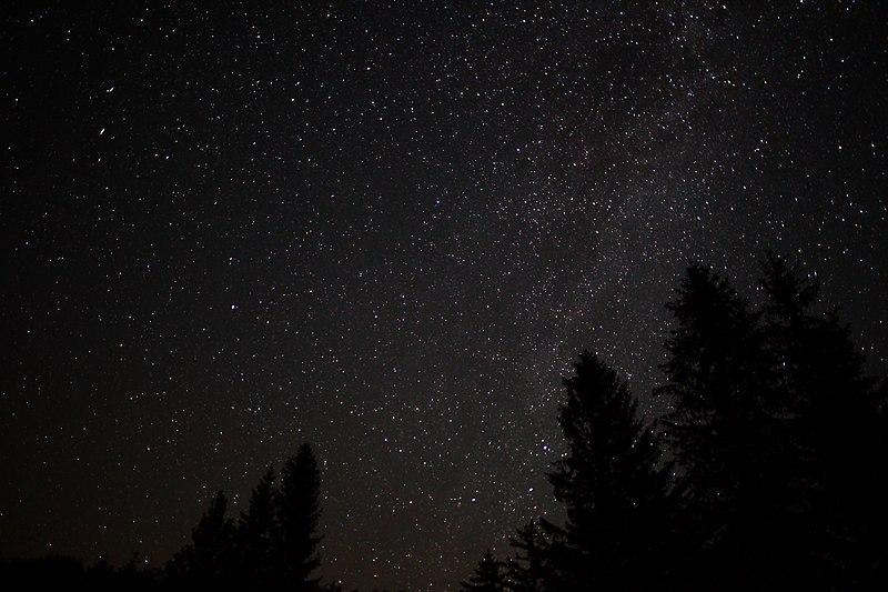 File:Spruce-forest-night-sky-stars - West Virginia - ForestWander.jpg