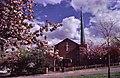 St Thomas's Church, Oakwood - geograph.org.uk - 42073.jpg