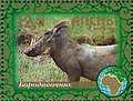 Stamp of Abkhazia - 2007 - Colnect 1010911 - Warthog.jpeg