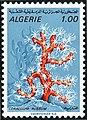 Stamp of Algeria - 1970 - Colnect 197098 - Red Coral Corallium rubrum.jpeg
