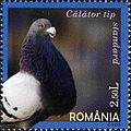 Stamps of Romania, 2005-108.jpg