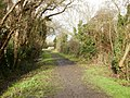 Start of a walk along Gun's Lane - geograph.org.uk - 1727421.jpg