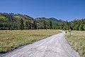 Start of fall color in Lockett Meadow. (29741918556).jpg