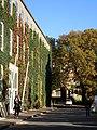 Statsbiblioteket (Aarhus Universitet).jpg