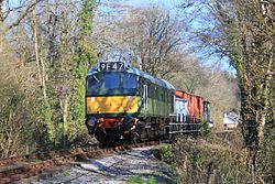 Staverton Woods -D7612 goods train from Totnes.JPG
