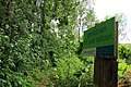 Steenbergse bossen 33.jpg