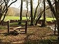 Stile, Cross's Wood - geograph.org.uk - 2318894.jpg