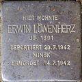 Stolpersteine Köln, Erwin Löwenherz (Klettenberggürtel 57).jpg