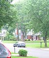 Street scene in Hollindale!.jpg