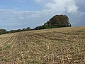Stubble near Bytham Farm - geograph.org.uk - 265649.jpg
