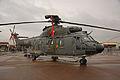 Super Puma Swiss Air Force 2 (7568930818).jpg