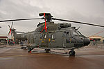 Super Puma Swiss Air Force 2 (7568930818).jpg