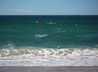 Nippers - Nippers during their Surf Race competition.