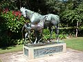Sydney Royal Botanic Gardens (06).jpg