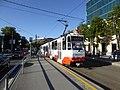 TLT tram line 1 at Mere puiestee 01.jpg