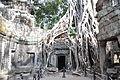 Ta Prohm - Angkor (6207929649).jpg