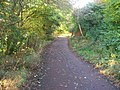 Taff Trail-NCN 8 route between Llandaff and Forest Farm - geograph.org.uk - 1585153.jpg