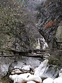 Tai Ping Forest Park 太平森林公园 (5248012259).jpg