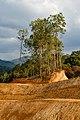 Tambunan-District Sabah Remodelling-landscape-02.jpg