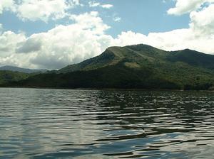 Tapo-Caparo National Park - Image: Tapo Caparo National park Venezuela