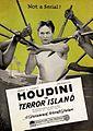 Terror Island (1920) - Ad 1.jpg