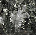 Tetrahedrite-Quartz-235305.jpg