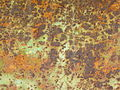Texture - Juin 2015 05.JPG