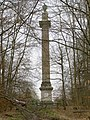 The Ailesbury Column, Savernake Forest - geograph.org.uk - 153435.jpg