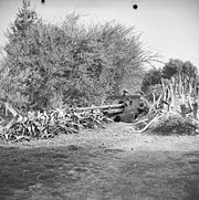 The British Army in Tunisia 1943 NA939