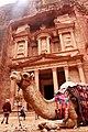The Camel & The Treasury.jpg