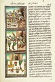 The Florentine Codex- Aztec Feather Painters IV.tiff