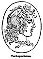 The Gorgon Medusa. - Engravings on Wood.jpg
